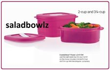 TUPPERWARE CRYSTALWAVE POWER LUNCH SET 2 and 3-1/4 c Rectangular Containers PINK