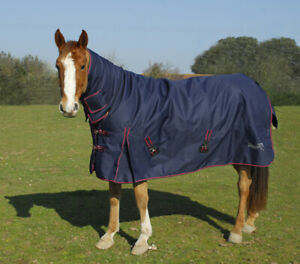 Heavy Weight 350gm Combo Turnout Rug