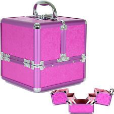 Aluminum Makeup Train Case with Pink and Purple Organizer