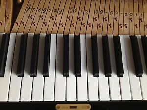 Bien éDuqué Steinway & Sons Grand Piano Keytops Set De 36 Pièces, Nouveau Gregory Shir Modèle-afficher Le Titre D'origine