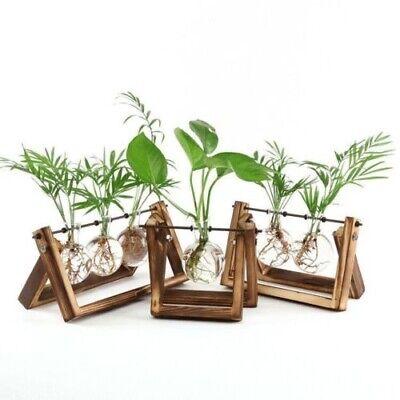 DESKTOP GLASS BULB PLANTER WOODEN BASE VASE FOR HYDROPONIC PLANTS HOME DECOR 10