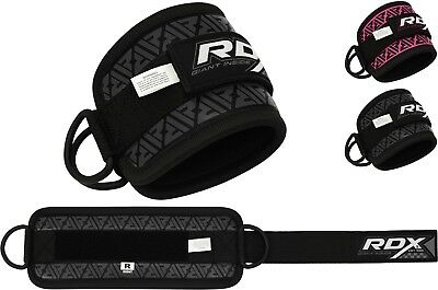 Offizielle Website Rdx Ankle Strap Gym Twin D-ring Multi Cable Attachment Leg Thigh Pulley Lifting SorgfäLtig AusgewäHlte Materialien
