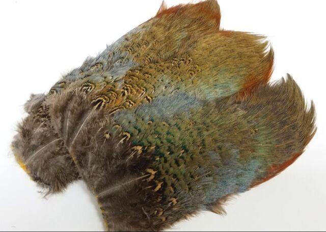 Hareline Ringneck Pheasant Rump Patch Brown