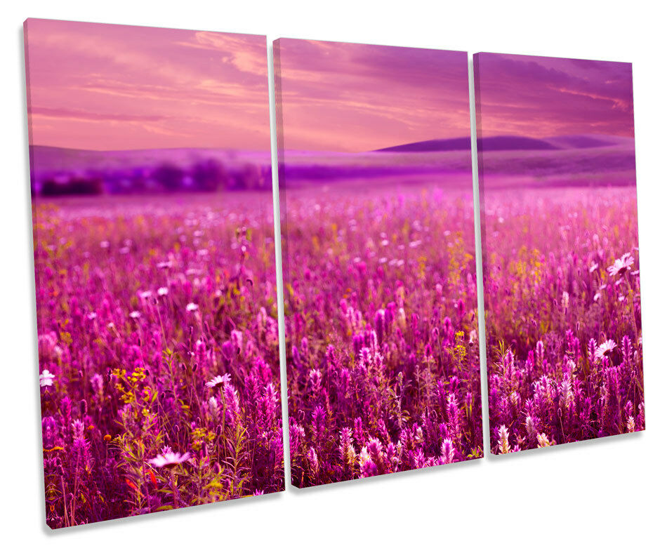 Blossom Field Floral Flowers TREBLE CANVAS WALL ART Box Framed Picture
