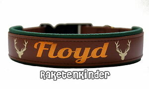 biothane halsband 2 5cm braun gr n bedruckt telefonnummer name gepolstert ebay. Black Bedroom Furniture Sets. Home Design Ideas