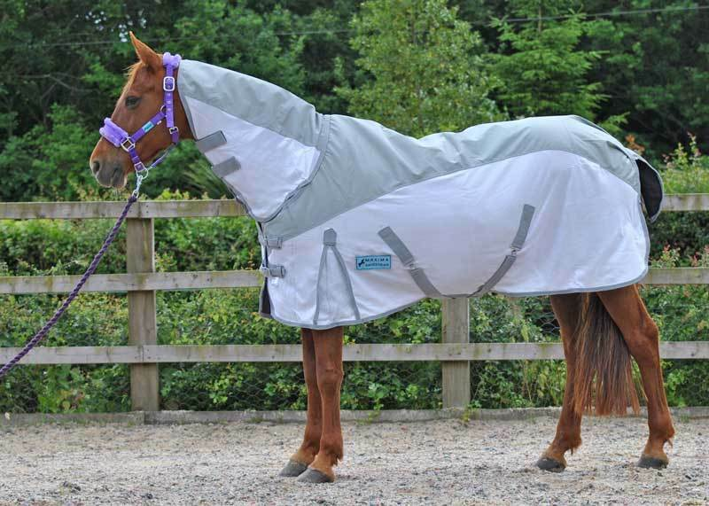 MAXIMA WATERPROOF COMBO FLY RUG NEW RANGE AVAILABLE IN SIZES 4'9 - 7'0