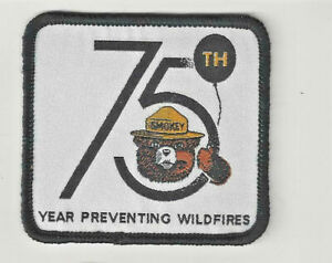 Rare Vintage 1950s Smokey The Bear Prevent Forest Fire Dept Ag Tan Patch New NOS