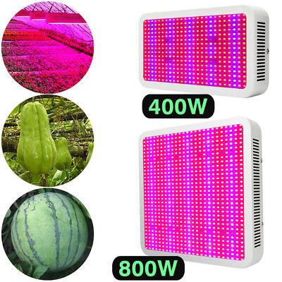 LED Grow Lampe Vollspektrum 800W 150W Pflanze Lampe Hydro
