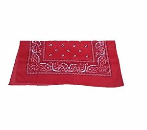 Ravissement Rouge Cowboy Cowgirl Bandana Déguisement Far West Écharpe Cou Cravate Foulard-afficher Le Titre D'origine Remises Vente