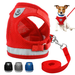 Small-Dog-Harness-Leads-Kit-Reflective-Mesh-Pet-Puppy-Cat-Vest-Jack-Russell-S-XL
