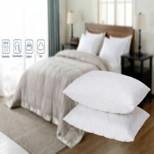 2 Pack Luxury Ultra Loft Jumbo Super Bounce Back Pillows