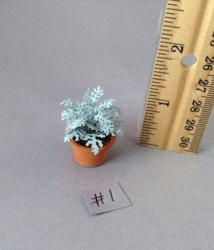 Dollhouse miniature DIY laser cut 1//12th scale Dusty Miller plant