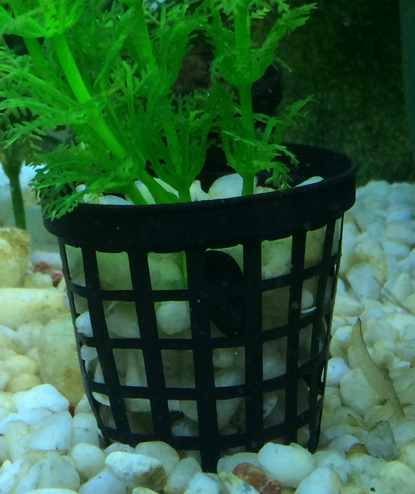 50mm NET Pot Aquarium Pack of 200 for Fish tank plants Aquatic tubes