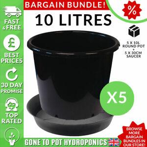 Pot Et Soucoupe Discount Bundle - 5 X 10 L Rond Pot, 5 X 30 Cm Soucoupe-afficher Le Titre D'origine