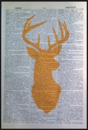 3x Stag Head Vintage Prints 1933 Dictionary Page Wall Art Pictures Yellow Deer