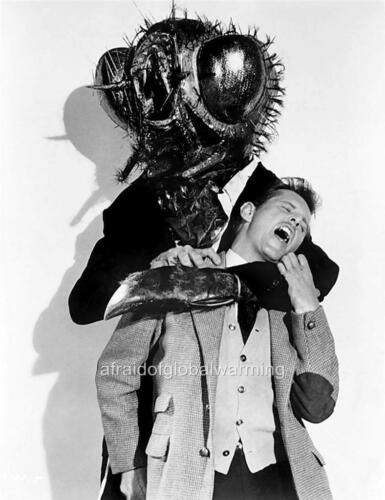 The Fly Science Fiction Movie Photo 1958