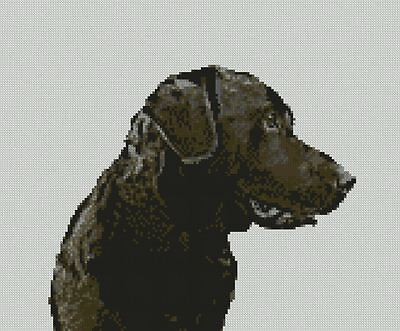 """Poodle Black Dog  Puppy Counted Cross Stitch Kit 11.5/"""" x 11.5/"""" D2400"""