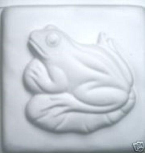 Abs plastic reusable frog mold tile mold.