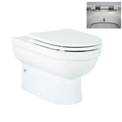Incredible Valeria Back To Wall All In One Combined Bidet Toilet With Ibusinesslaw Wood Chair Design Ideas Ibusinesslaworg