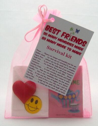 BEST FRIEND SURVIVAL KIT FUN HAPPY GIFT /& LOVE HEART SWEETS BIRTHDAY CHRISTMAS