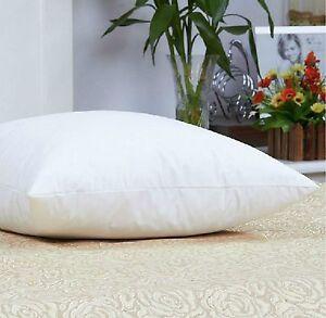 Luxurious 100 Down 650 Fill Power White Goose Down Pillow