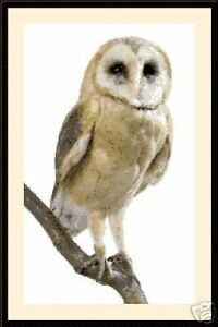 Owl-1024-Cross-Stitch-Kit