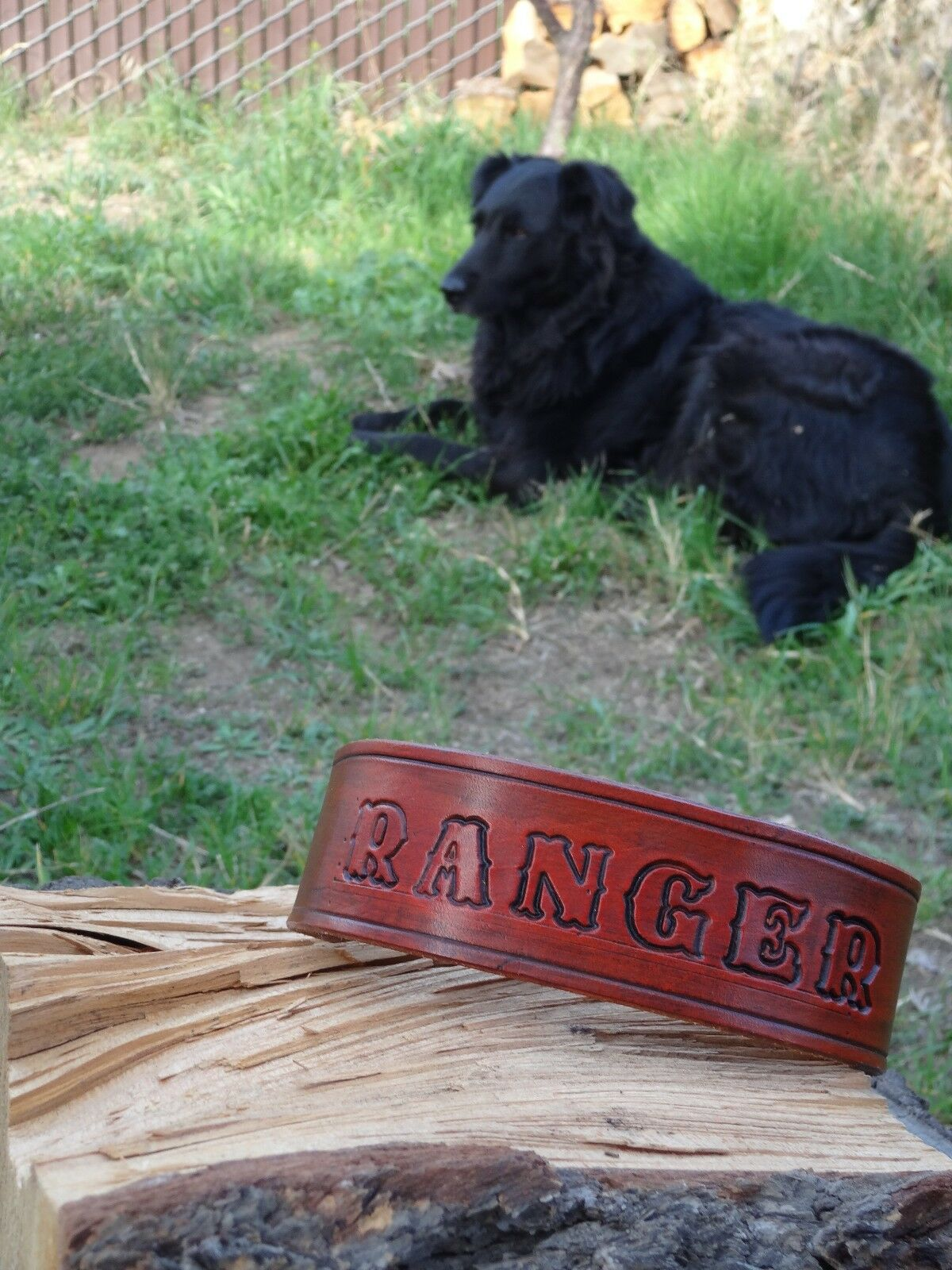 Personalized Hand Stamped Leather Dog Collar, for Large Dogs