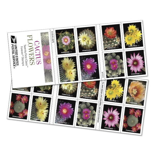 2019 55c Blooming Cactus Flowers, Booklet of 20 Scott 5