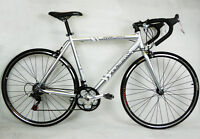 Teman Men's Racing Bike Shimano 21 Gears Alloy Frame Silver 58cm
