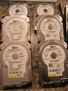 Lot-of-10-WD-80GB-3-5-034-SATA-Hard-Drives-Tested-amp-Wiped-desktop-DVR-PC-MAC-tested