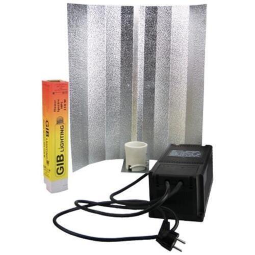 SPP 250W Blüte Lampenkit PLUG/&PLAY mit GiB Flower Spectre /& Reflektor NDL MH