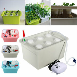 6-Plant-Grow-Site-Deep-Water-Culture-Hydroponic-System-Bubble-Tub-Air-Pump-AU