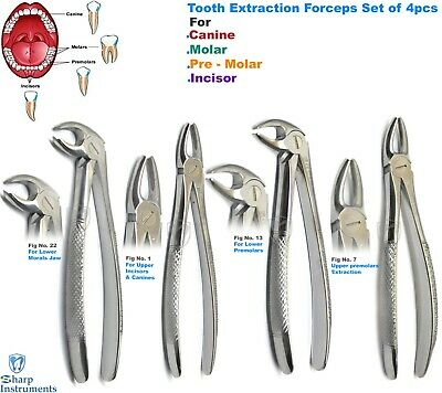 Root Forceps Tooth Extraction Dental Extracting Roots Pick Forcep Instrument 4pc Ebay