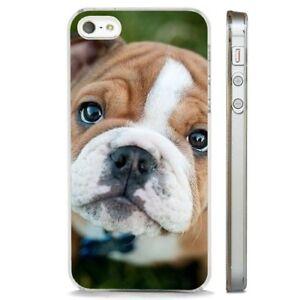 Dettagli su British Bulldog cucciolo carino chiaro Telefono Custodia Cover si adatta iPHONE 5 6 7 8 X- mostra il titolo originale