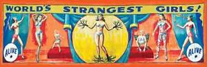 Vintage Freakshow Sideshow Circus Fair Carnival World's Strangest Girls  Banner