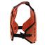 PULSE-RENEGADE-ORANGE-MOTOCROSS-MX-ENDURO-BMX-MTB-MOUNTAIN-BIKE-CHEST-PROTECTOR thumbnail 3