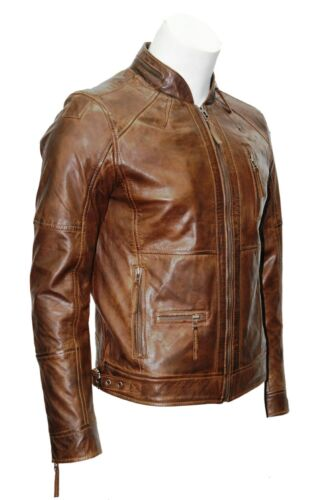 Soft Leather Collar Zip Classic Brown 152 Wax Jacket M Casual Men's ISwYqXzY