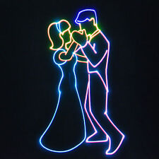 RGB CARTOON ANIMATION LASER * SEE VIDEO* dj karaoke disco lights lazer lazor