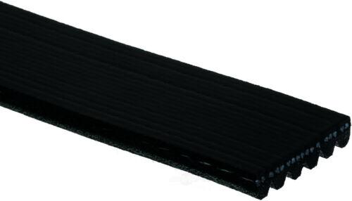 Serpentine Belt-Standard ACDelco Pro 6K905