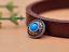 10X-Silver-Tone-Flower-Leather-Craft-Bag-Belt-Purse-Decor-Turquoise-Conchos-Set miniature 68