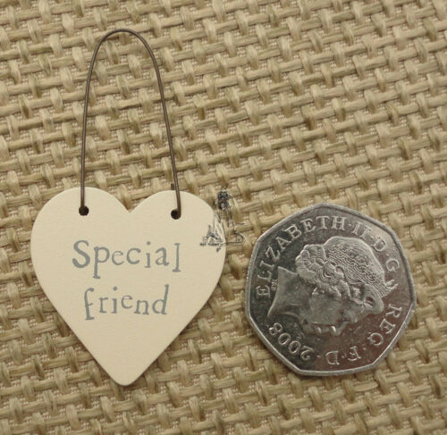 EAST OF INDIA LITTLE WOODEN HEART SIGNS AND GIFT TAGS WITH MESSAGE