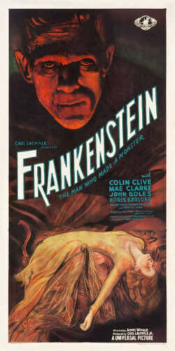 1931 FRANKENSTEIN BORIS KARLOFF VINTAGE MOVIE POSTER PRINT 48x24 STYLE C 9MIL
