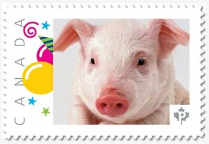 uq. Year of the PIG = PIGLET = Picture Postage MNH-VF Canada 2019 [p19-01s07]