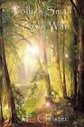 Polly's Small Town War by J. E. Christer (Paperback, 2009)