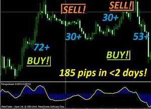 Best forex trading system market wrap