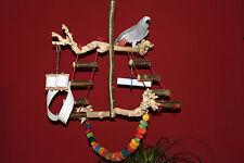 HÄNGEFREISITZ aus Holz Papageien Freisitz JAVA WURZELHOLZ Papageienspielzeug NEU