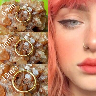 Thin Fake Nasen Ring Septum Ring Hoop Knorpel Tragus Helix kleine dünne Piercing | eBay