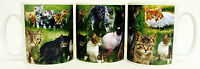 Cats Mug Ceramic Collage Cats Scene Mug Hand Decorated in UK