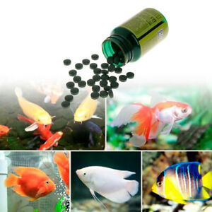 Spirulina-Food-Shrimp-Aquarium-Tablets-Aquarium-Fish-Food-Pills-Algae-50g-1-ji
