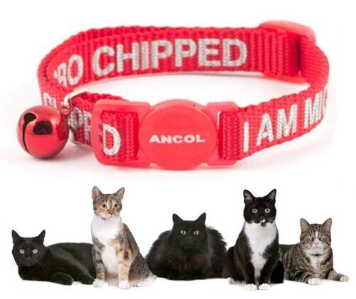 """Collar para gatos reflectante texto /""""Estoy Micro roto/"""" Seguridad Collar para gatos con Campana"""